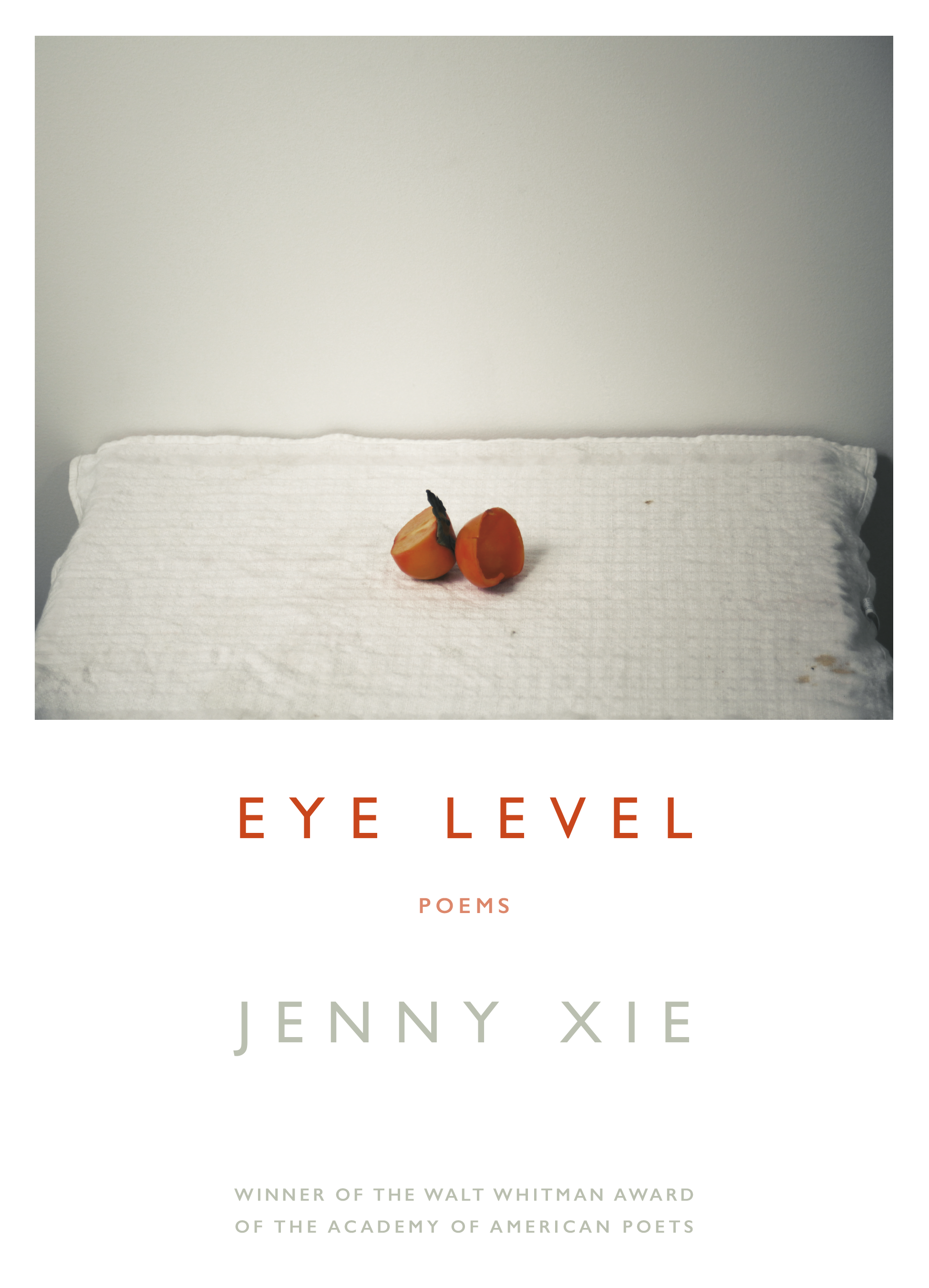 Image result for eye level jenny xie