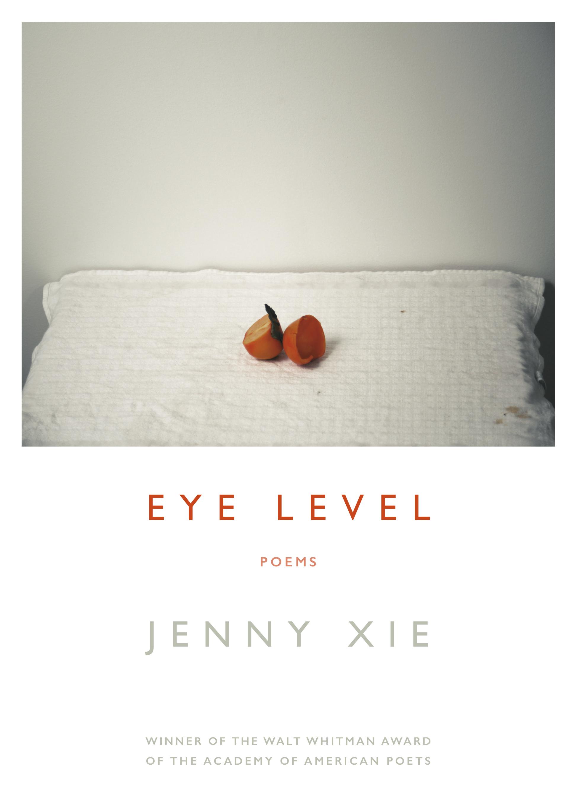 Image result for eye level jenny xie