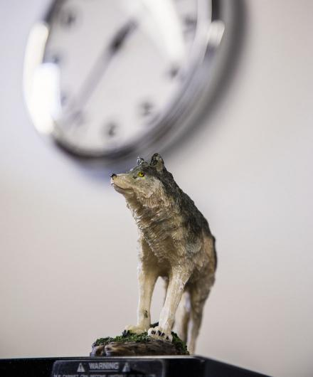 Small wolf figurine at the Graywolf office
