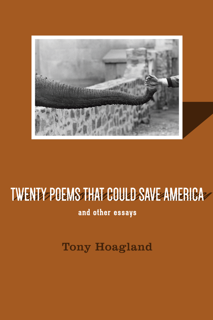 Twenty Poems That Could Save America and Other Essays
